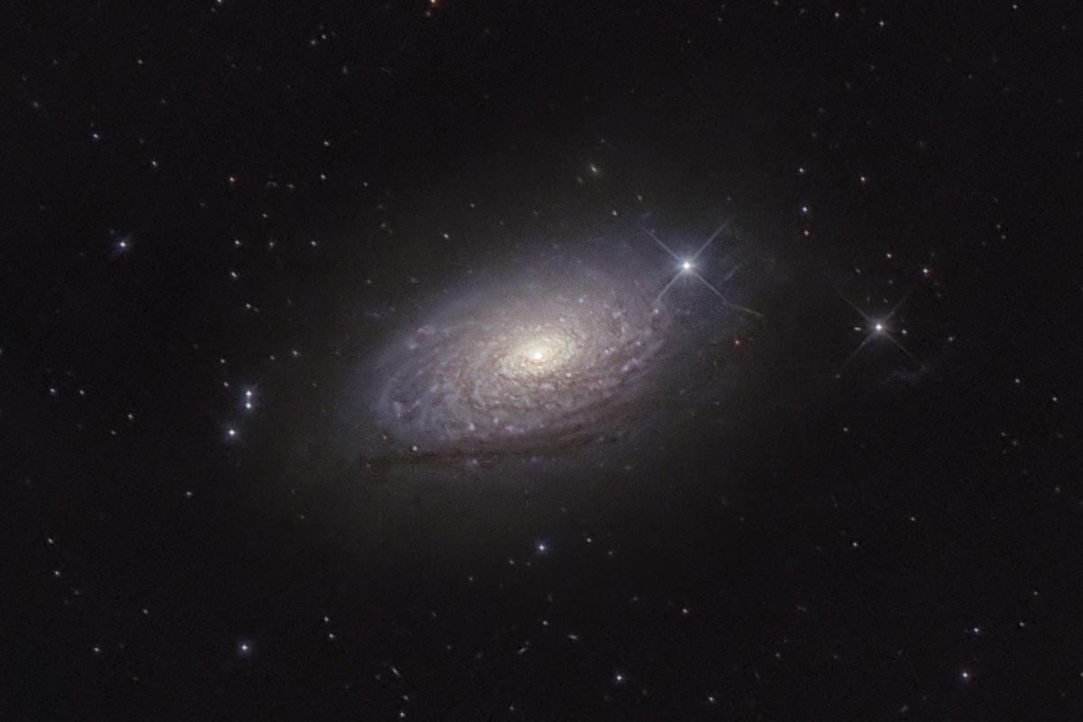 M63 - Sunflower Galaxy - Detail