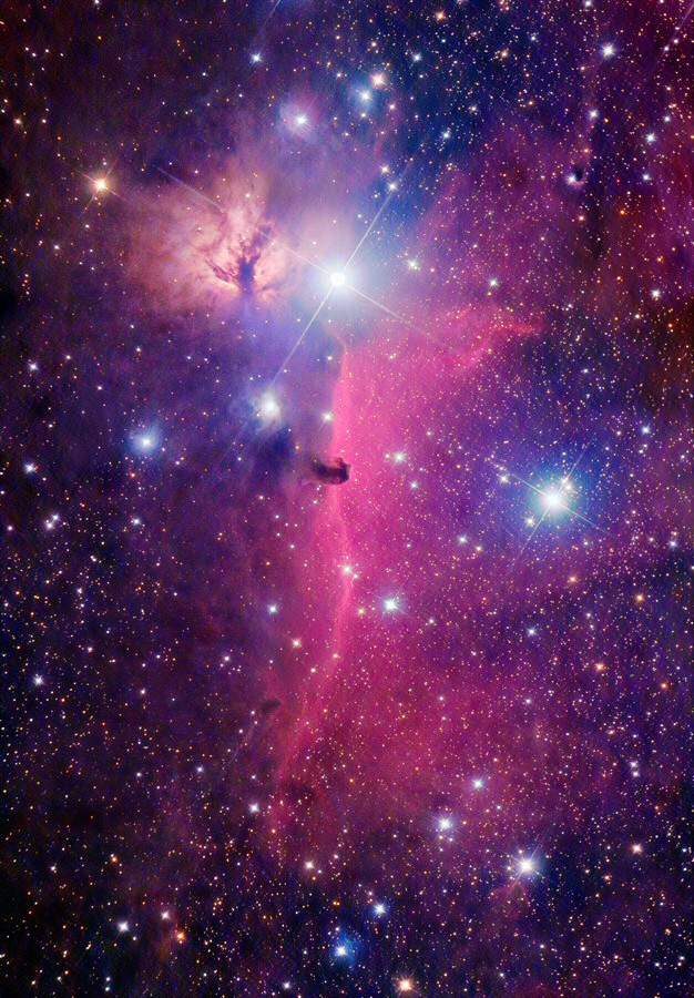 Horsehead Nebula Region
